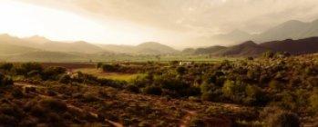 Connaissance du Monde : « Afrique du Sud »